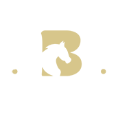 Broomfield Primary School Logo 2
