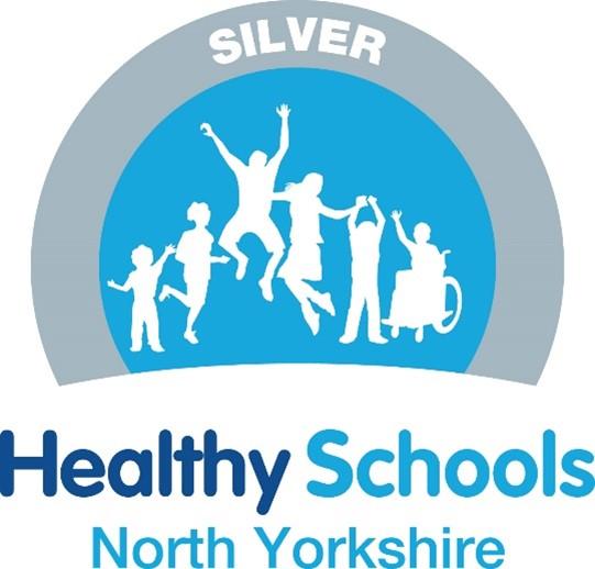 Healthy School NY Logo Silver