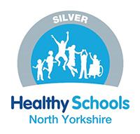 Healthy School NY Logo Silver small